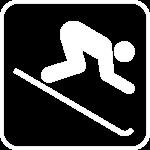 skier wit